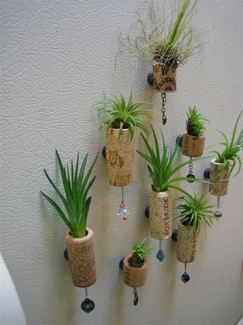 set   unique air plant cork succulent magnet fridge