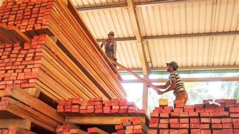wood mizer lt lt sawmills improving timber profits