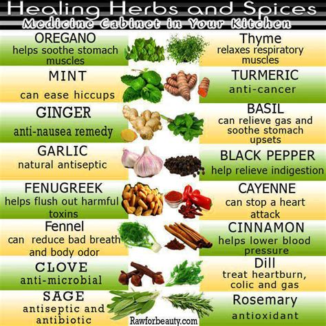 seasoning savvy how to cook with herbs spices and other flavorings books different ways to prepare healthy spices and herbs