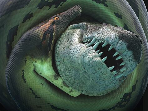 film monster ular channel 20 history titanoboa the biggest snake that ever