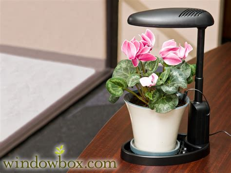 intelligent plant light grow lights indoor gardening