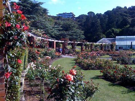 Wellington Botanical Gardens Garden Picture Of Wellington Botanic Garden Wellington Tripadvisor