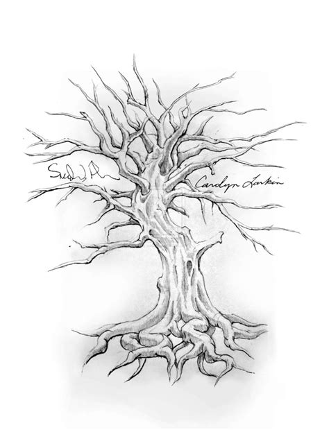 sohl family tree tattoo design family tree drawings family tree design