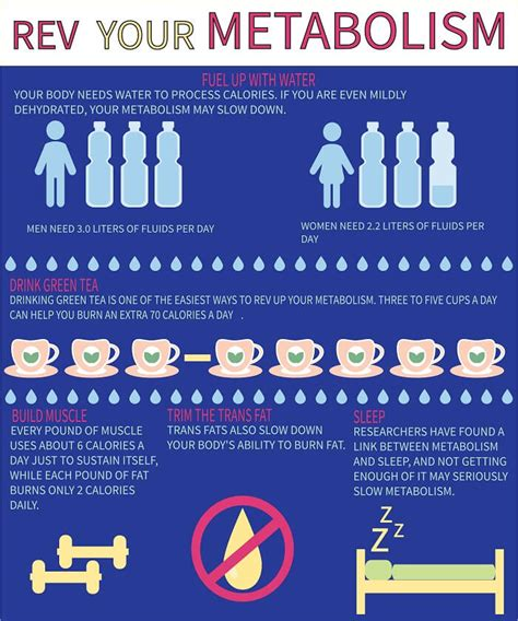 How Many Calories Does Detox Burn by Water Burning Process Demonews