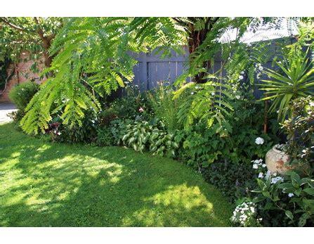 Backyard Ideas New Zealand Gardening Wellington Landscaping Garden Designs Lower Hutt