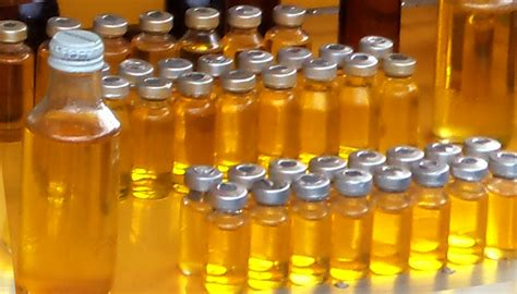 Minyak Lintah Minyak Lintah manfaat minyak lintah