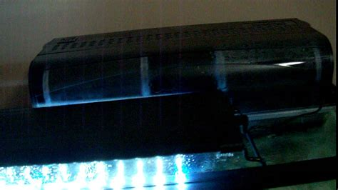 led light for 55 gallon aquarium 55 gallon aquarium w glass canopy and led light