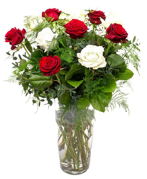 Roses Delivery by Send Roses Delivery Stem Roses Autos Post