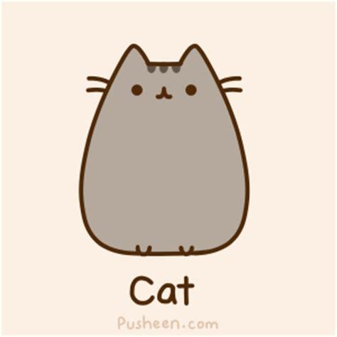 cat untuk wallpaper bouncing cat cartoon gifrific