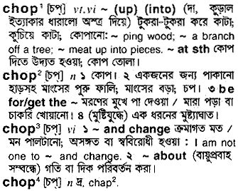 Chop Definition Meaning What Is Chop In The British | chop bengali meaning of chop at english bangla com