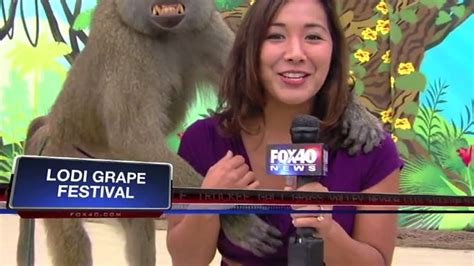 12 of the best new compilation of the best local news from 2013