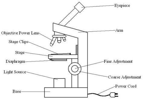 diagram of microscope microscope drawing cliparts co