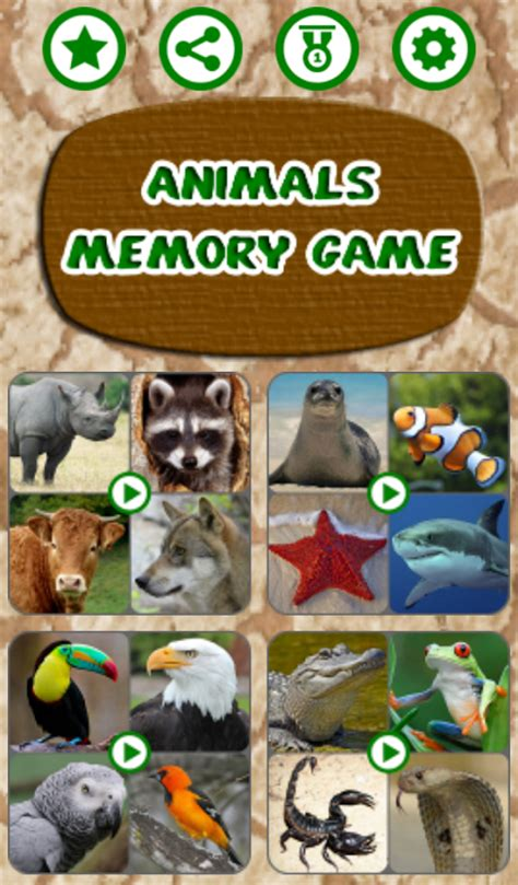 animals memory time android apps animals memory game android apps on google play