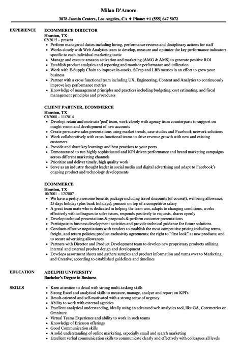 Ecommerce Resume by Ecommerce Resume Sles Velvet