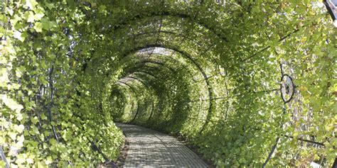 a beautiful tourist garden full of plants that could kill you huffpost