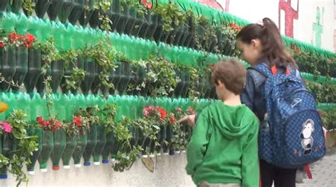 vertical gardening bottles