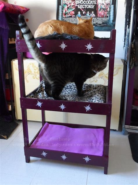 cat bunk bed catster diy make your own triple kitty bunk bed catster