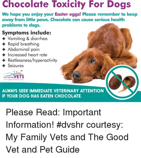 chocolate toxicity the pet wiki signs of chocolate intoxication in dogs thin blog