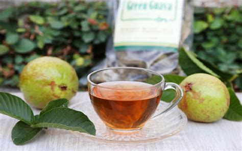 Detox Guava Tea by 20 Surprising Reasons Why Guava Leaves Tea Is
