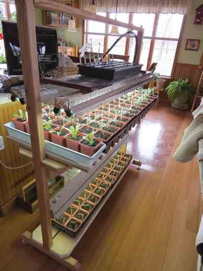 seed starting easy setups  home gardeners organic