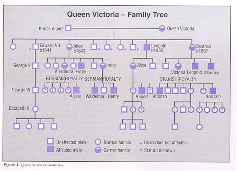 printable queen victoria family tree did you know that hemophilia is also called the royal