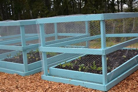 Chicken Wire Headboard by 101 Best Images About Raised Bed Gardening On