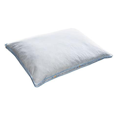 Oversized Pillows Royal Velvet Big And Soft Oversized Pillows Pack