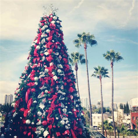 my first christmas in la includes palm trees christmas