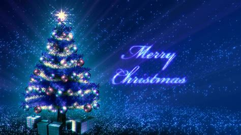 blue christmas tree growing stock video footage synthetick