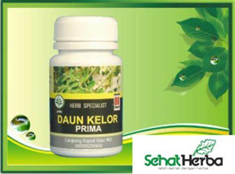 Sedia Kapsul Dan Simplisia Herbal obat herbal daun kelor sehatherba