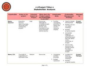 stakeholder analysis professional project services lcc
