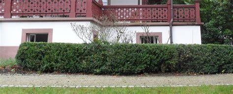 wege pl 228 tze gestaltung sitzpl 228 tzen terassen - Schröder Gartenbau