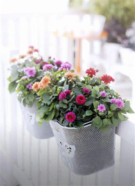 balkonbepflanzung ideen tolle blumen fuer balkon