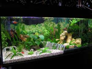 Home Aquarium Decorations Ideas For Aquarium D 233 Cor With White Sand Http