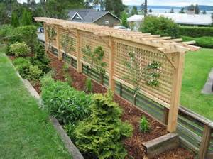 Landscape Trellis Would Make A Great Fence Around Your Garden And Grow Peas