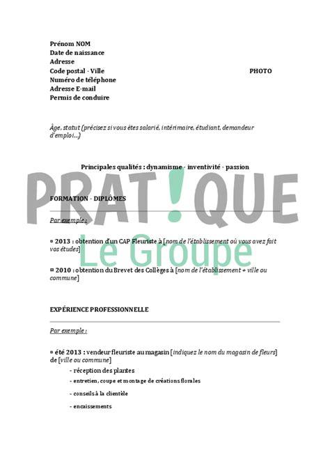 Modèle De Lettre Word modele cv brevet professionnel sle resume
