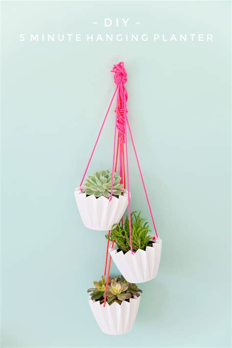 minute diy hanging planters  love  party