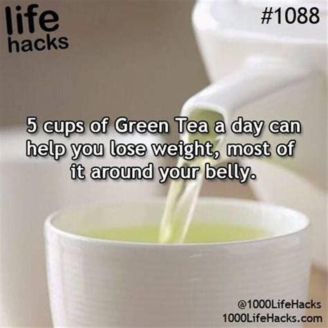 Does Green Tea Detox Your From Drugs by 17 Of 2017 S Best Diet Pills Ideas On
