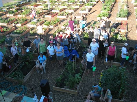 Peterson Garden Project by Organic Victory Gardens Reborn In Chicago By Peterson