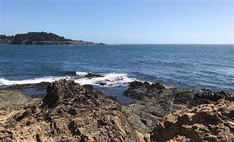 California Coast Mba Reviews by Mendocino Coast Ca Review Tripadvisor