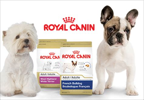 royal canin terrier puppy royal canin canada adds west highland white terrier and bulldog to breed health