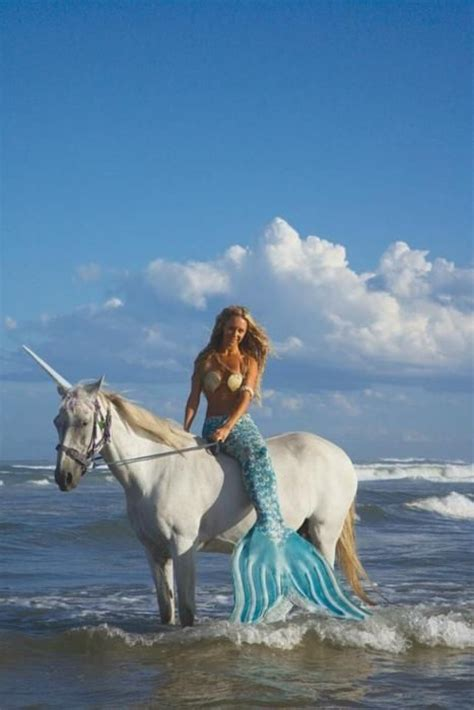 real mermaid photos on pinterest real mermaids real 1000 images about unicorns on pinterest pegasus a