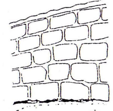 imagenes para dibujar en paredes pared de blocks con cemento sin cernido para pintar y