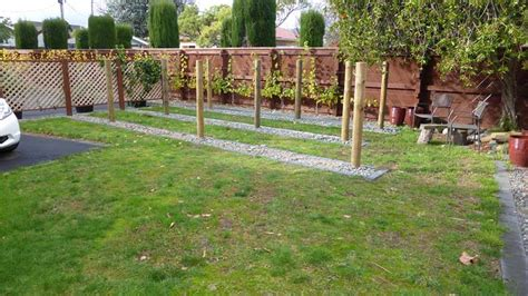 backyard vineyard design 5 awesome home vineyards homebrewing learn center