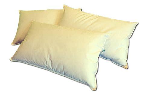 cuscini in piuma cuscino 100 piuma naturale