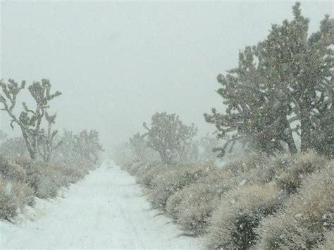 snow in desert snow in the mojave desert 2 15 12 winter let it snow