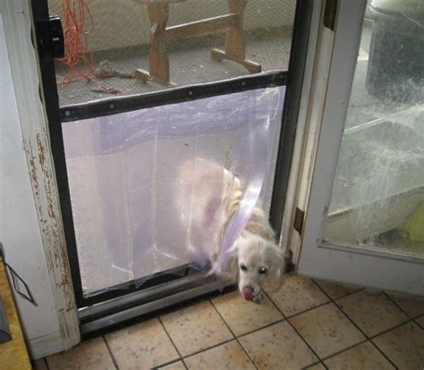 Screen Door With Doggie Door by Diy Screen Door Door Petdiys