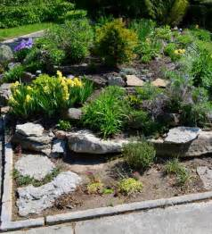 Rock Garden Images New Faces And Garden Spaces Horticulturehorticulture