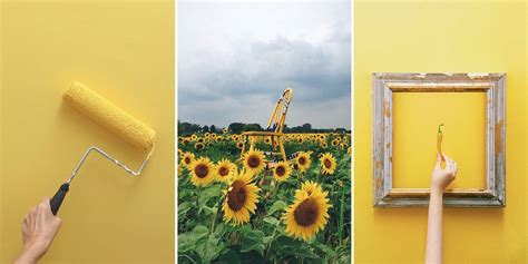 Yell Design Instagram   this instagram account will make you love the color yellow