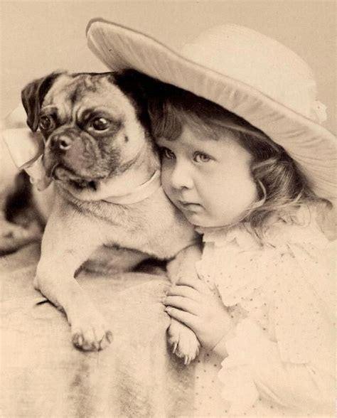 retro pug pug vintage